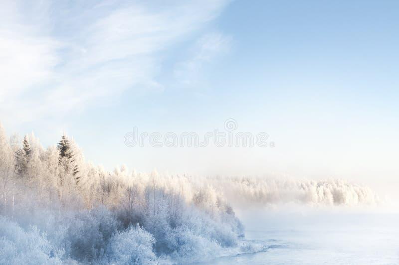 冬天风景,夺取在芬兰 免版税库存图片