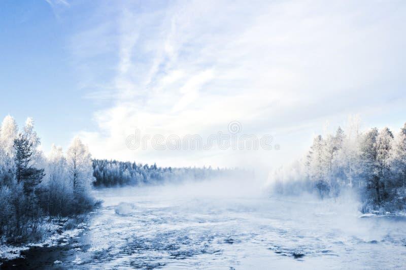 冬天风景,夺取在芬兰 免版税图库摄影