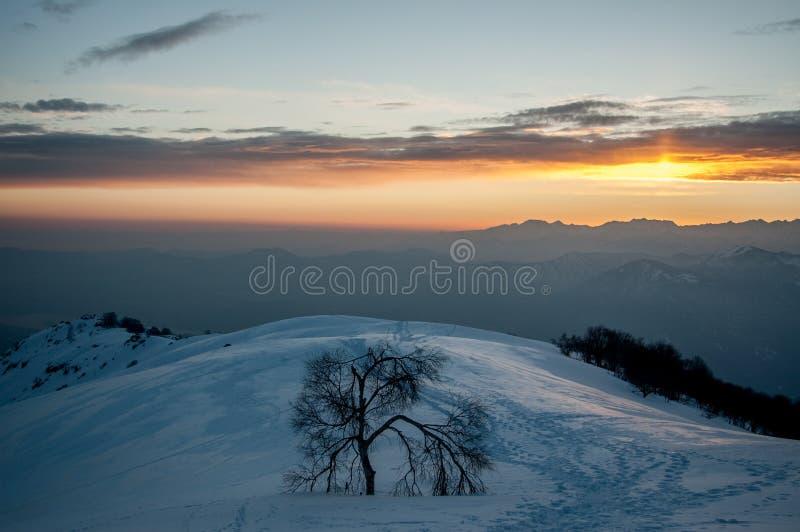 冬天风景 免版税库存照片