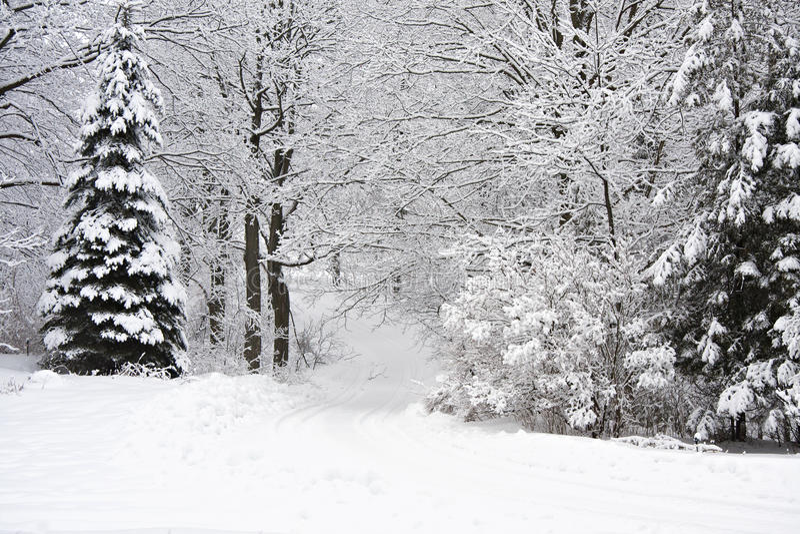 Download 冬天风景 库存照片. 图片 包括有 阴沉, 树冰, 沉寂, 国家(地区), 黑暗, 透视图, 颜色, beautifuler - 30327696