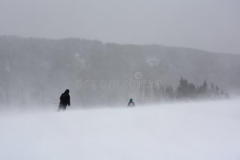 冬天飞雪的滑雪者 免版税库存照片
