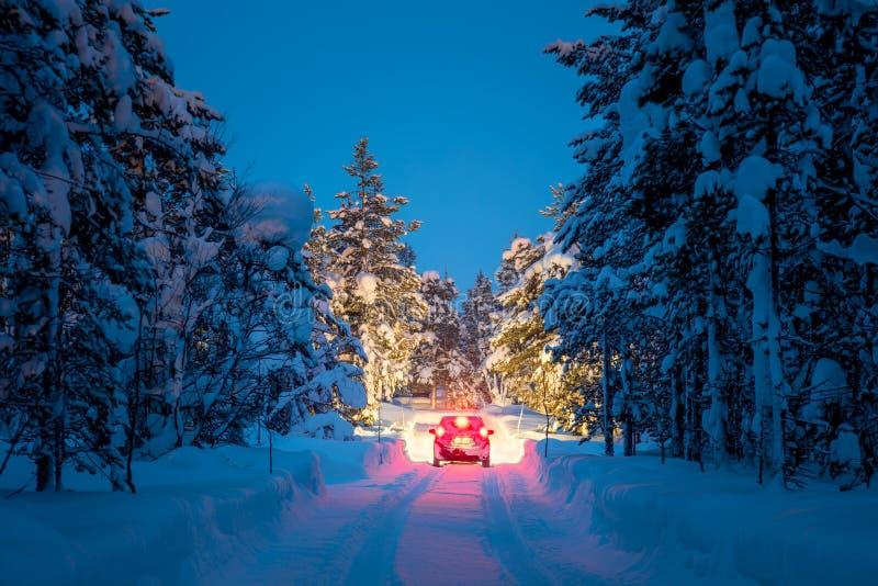 冬天驾驶-汽车和冬天路光在夜森林里 免版税库存照片