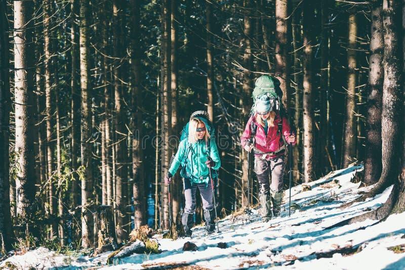 冬天高涨的两名妇女 免版税库存照片