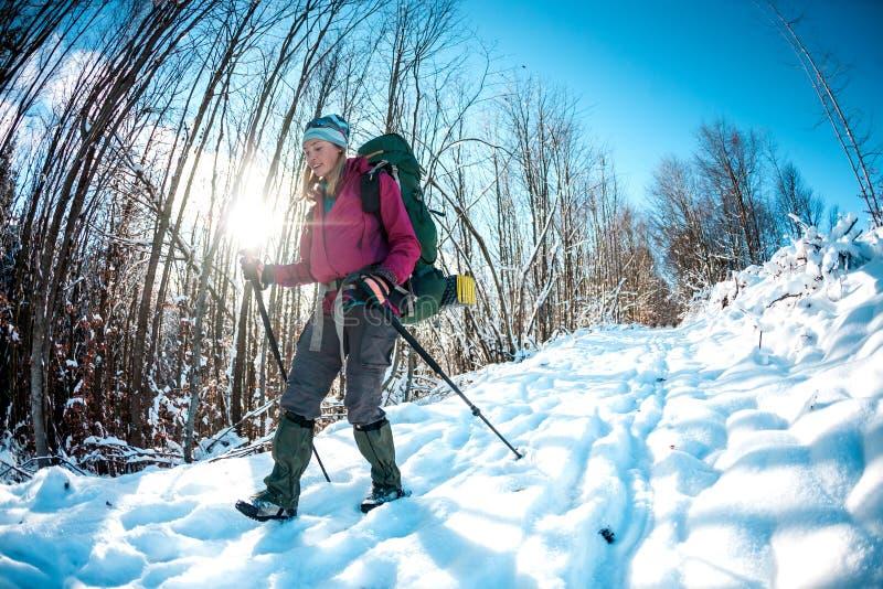 冬天高涨的妇女 免版税库存图片
