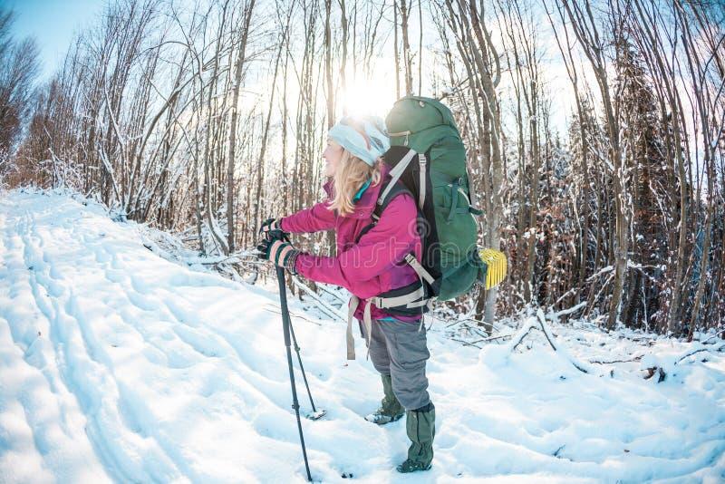 冬天高涨的妇女 库存图片