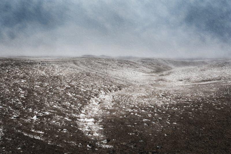 冬天,暴风雪风景击中草甸 免版税库存照片