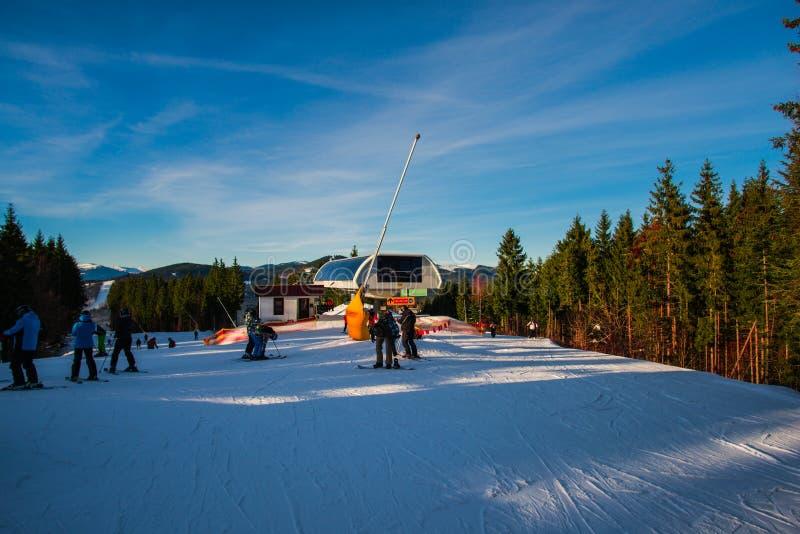 冬天滑雪 免版税库存照片