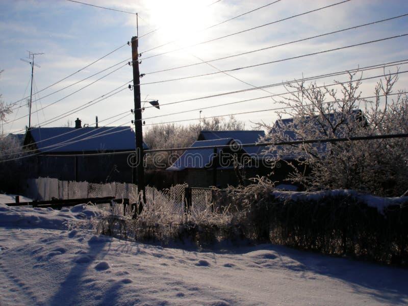 冬天 霜 免版税图库摄影