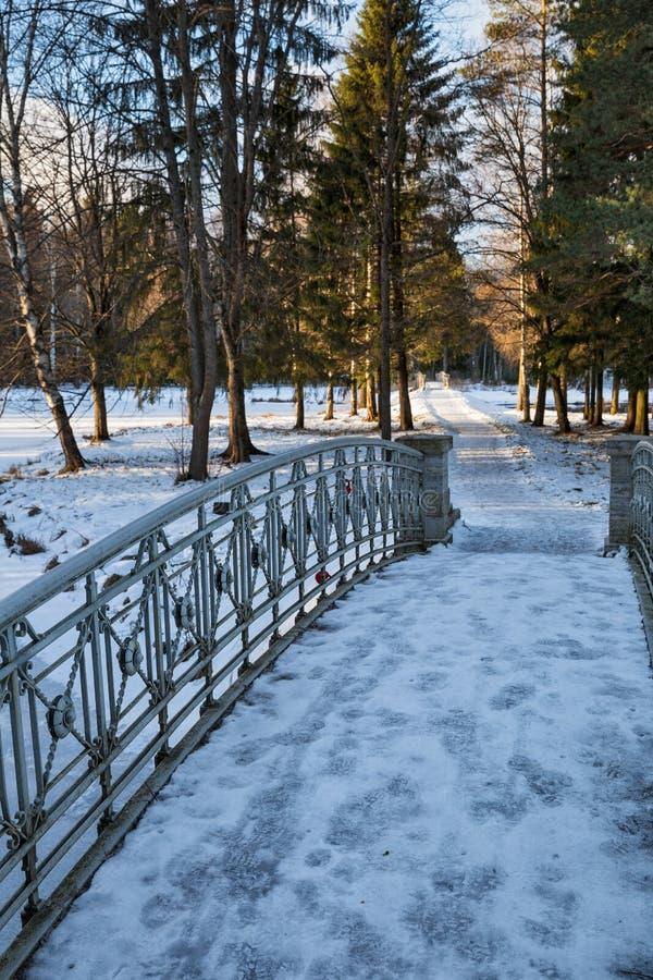 冬天Gatchina公园 库存照片