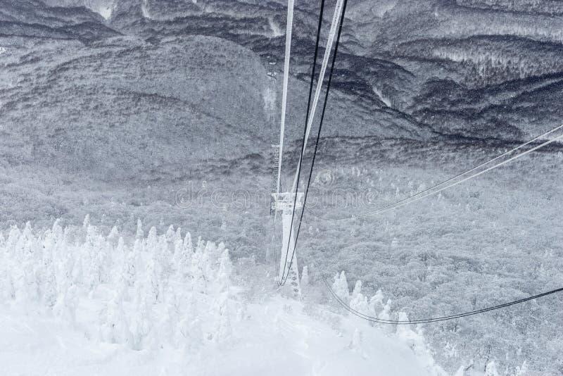 冬天Hakkoda索道在雪的缆绳塔在松树森林 图库摄影