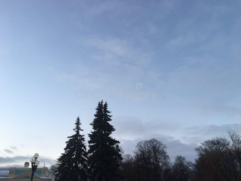冬日在基辅 库存照片