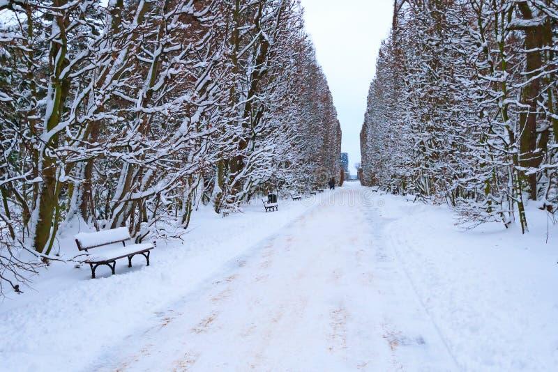 冬时的格但斯克Oliwa公园 库存照片
