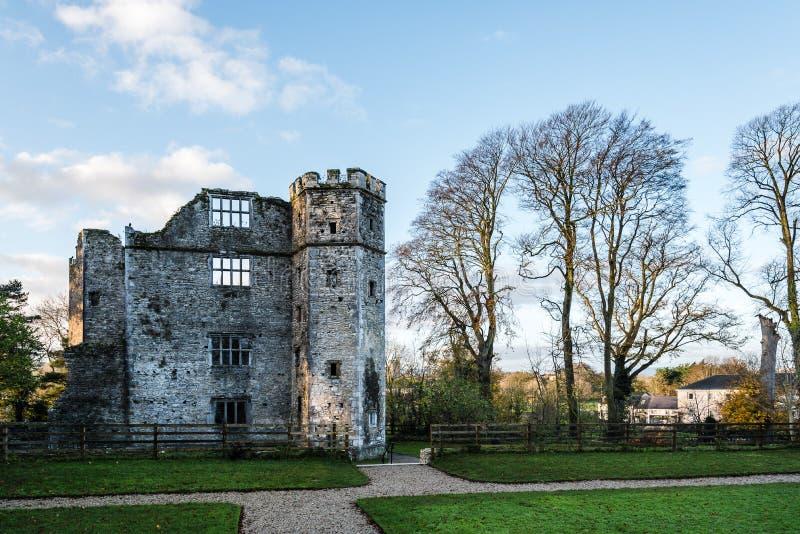 冬葵和庭院城堡日出的 库存照片