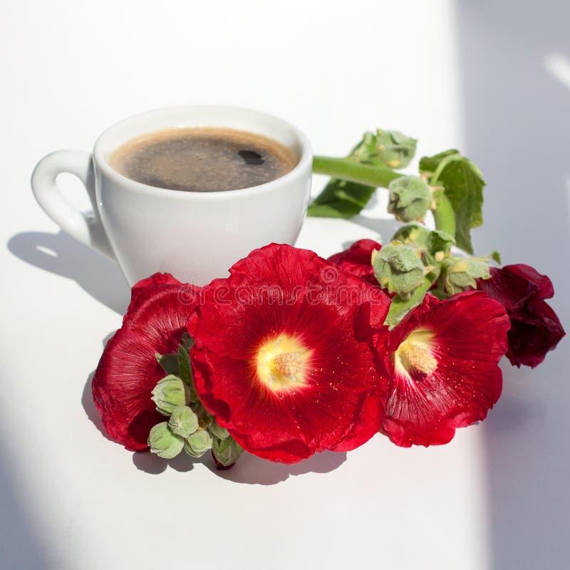 冬葵红色花和白色杯子分支与泡沫的热的无奶咖啡在桌上的早晨阳光下在白色背景 免版税图库摄影