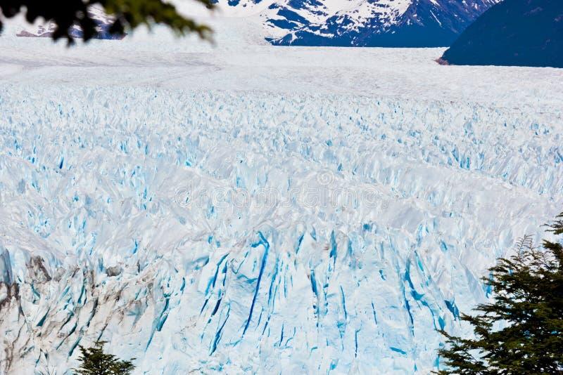 冰冰川表面全景在智利 库存照片