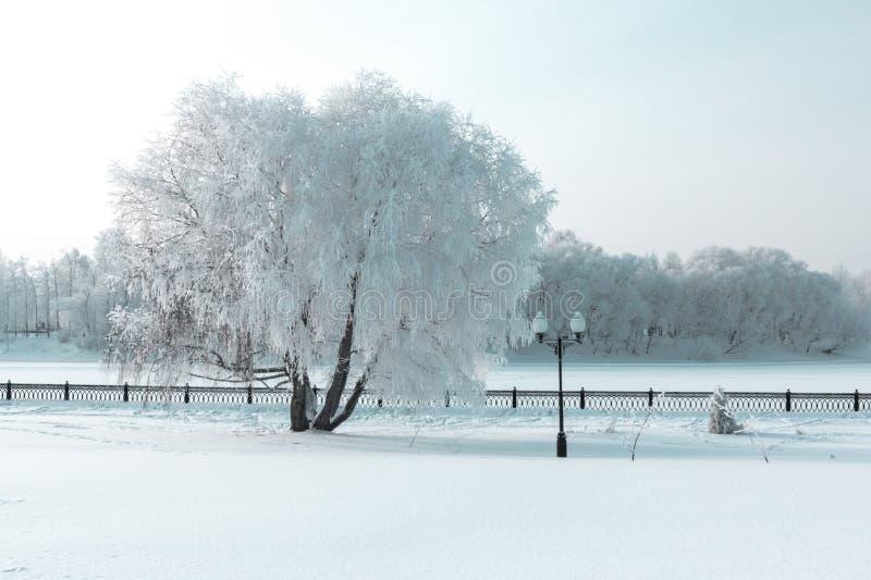 冰冷的冬天码头 免版税图库摄影