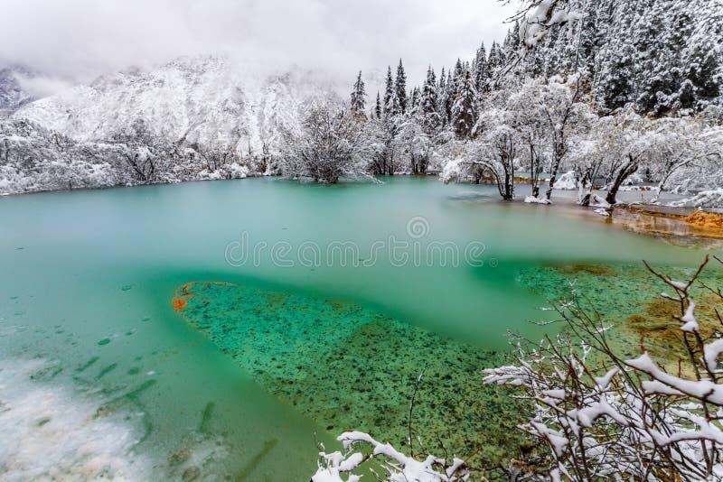 冰冷的水在色的湖在冬天 免版税库存照片