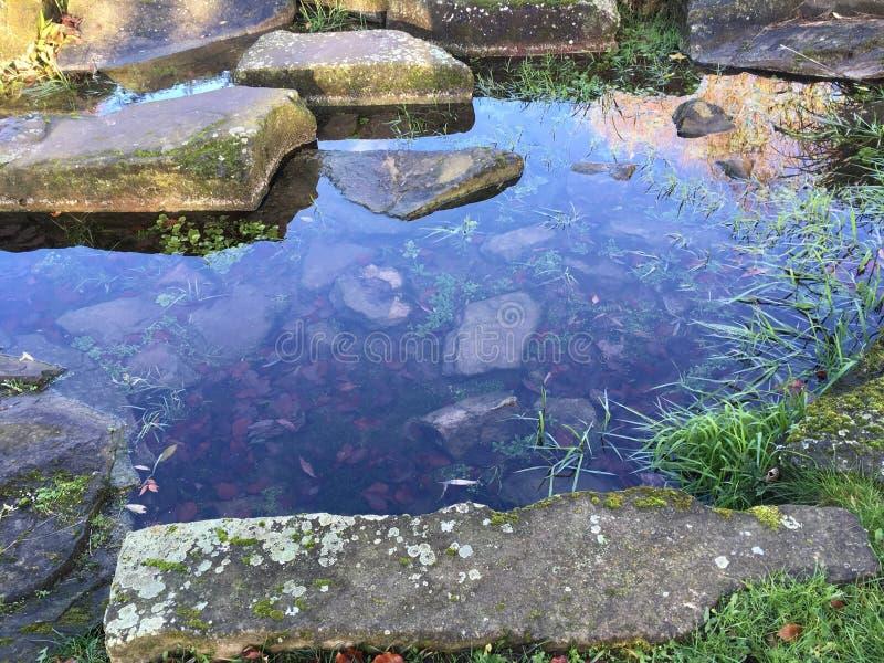 冰冷的水 免版税图库摄影