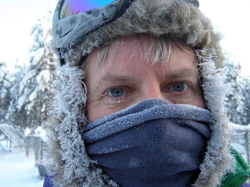 冰冷的蓝眼睛在拉普兰 免版税图库摄影