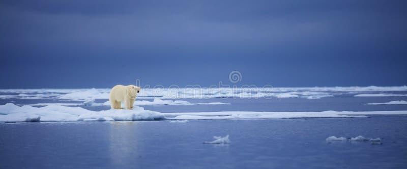 冰冷的边缘 库存照片
