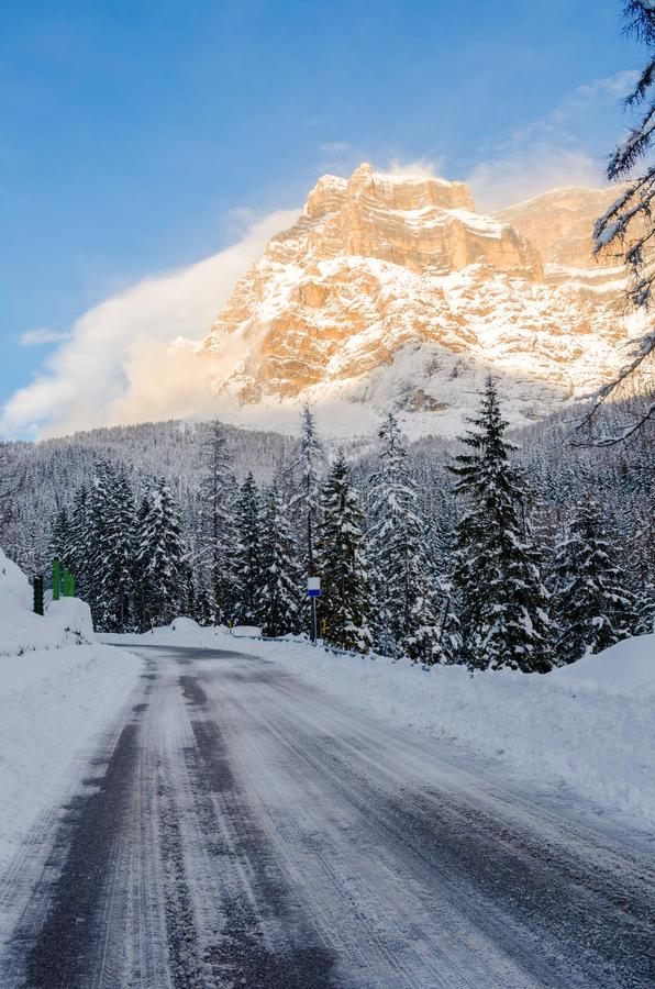 冰冷的高山路通过在新鲜的雪盖的森林 免版税库存照片