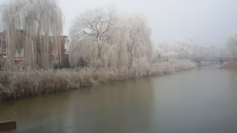 冰和尘土土地  免版税图库摄影