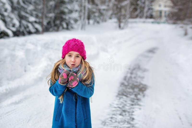 结冰在冬天的一件桃红色帽子和蓝色外套的逗人喜爱的小女孩 免版税库存照片