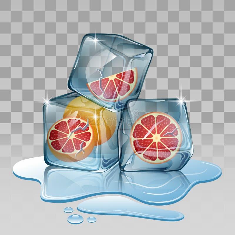 冰块用葡萄柚 皇族释放例证