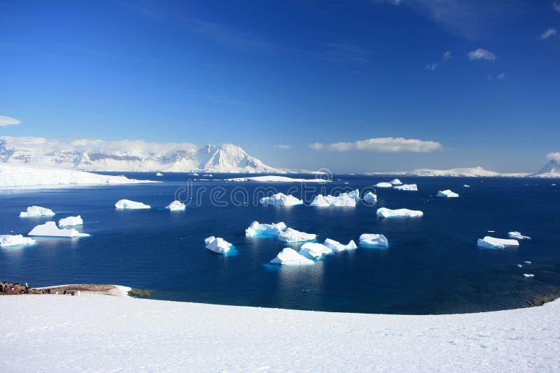 冰山,在雪的南极山 免版税库存图片