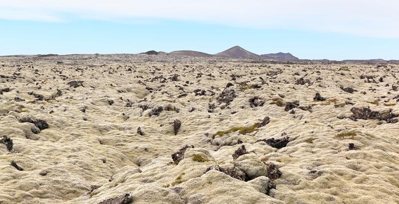 冰岛熔岩荒野Lanscape 免版税库存图片