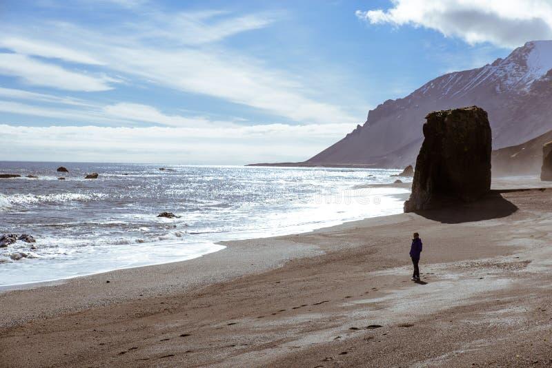 冰岛` s海 免版税库存照片