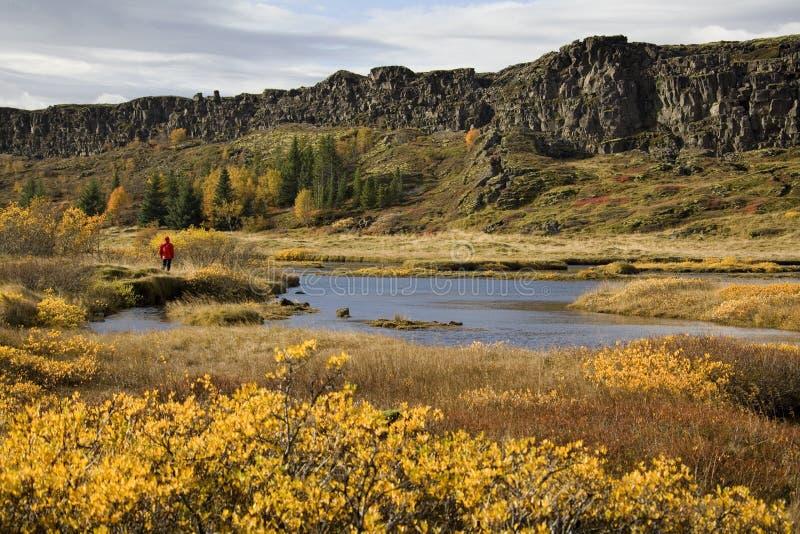 冰岛pingvellir Rift Valley 图库摄影