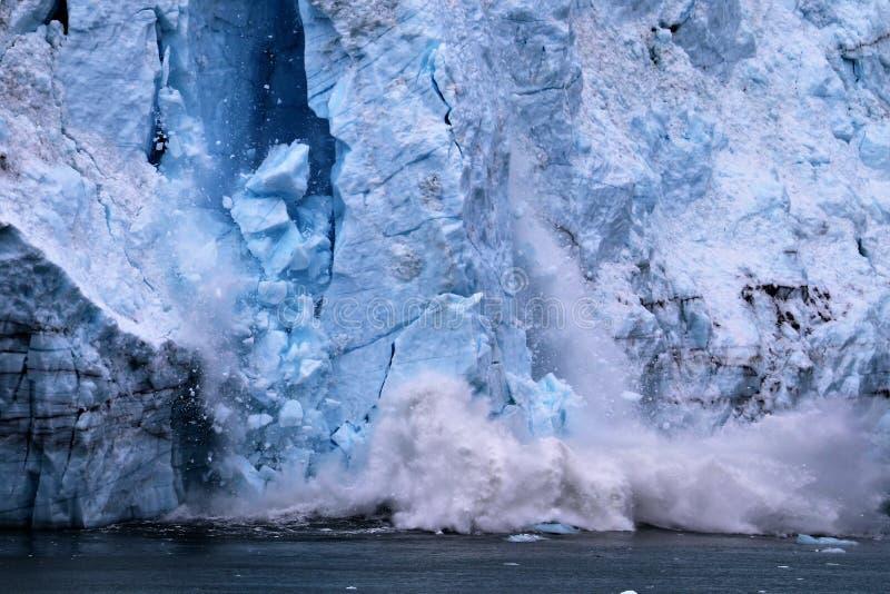冰川产犊在冰河海湾国家公园阿拉斯加 免版税图库摄影