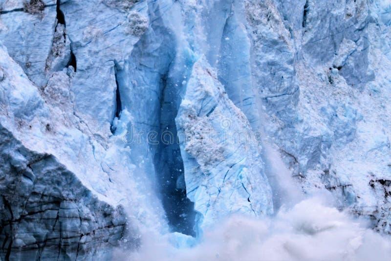 冰川产犊在冰河海湾国家公园阿拉斯加 图库摄影