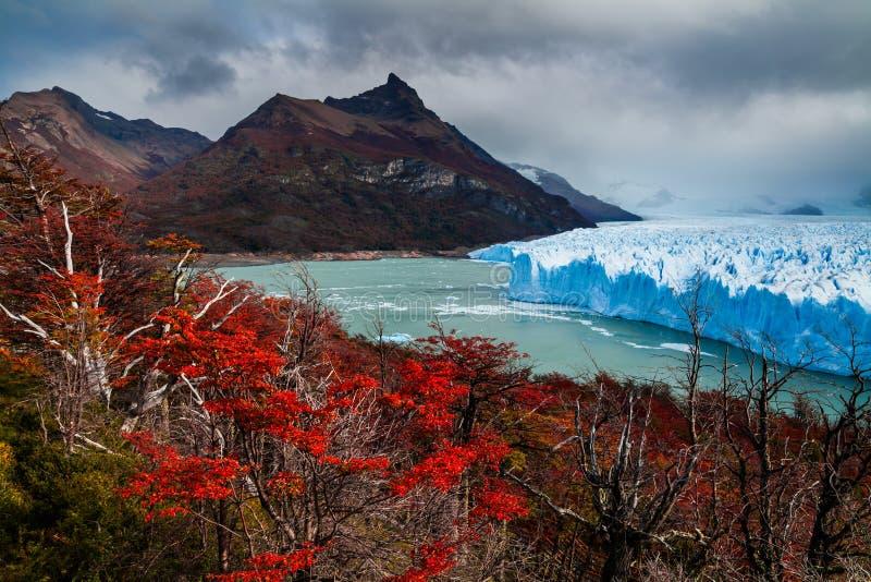 冰川佩里托莫雷诺国家公园在秋天 阿根廷,巴塔哥尼亚 免版税图库摄影