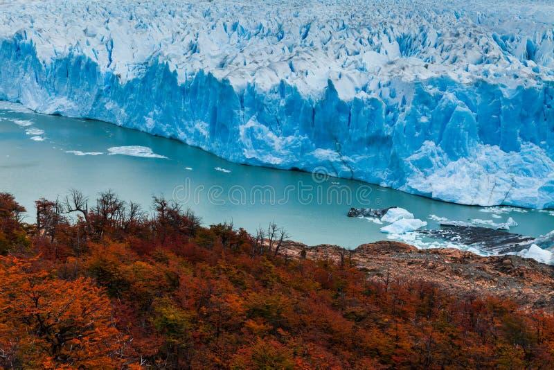 冰川佩里托莫雷诺国家公园在秋天 阿根廷,巴塔哥尼亚 免版税库存照片