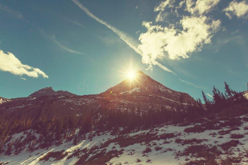 冰川公园 库存照片