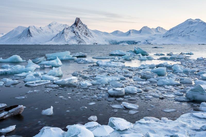 冰川冰漂浮在北极海湾的-卑尔根群岛 图库摄影