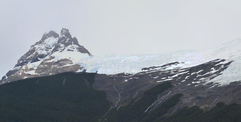 冰川和全球性变暖埃尔卡拉法特巴塔哥尼亚的阿根廷佩里托莫雷诺 图库摄影