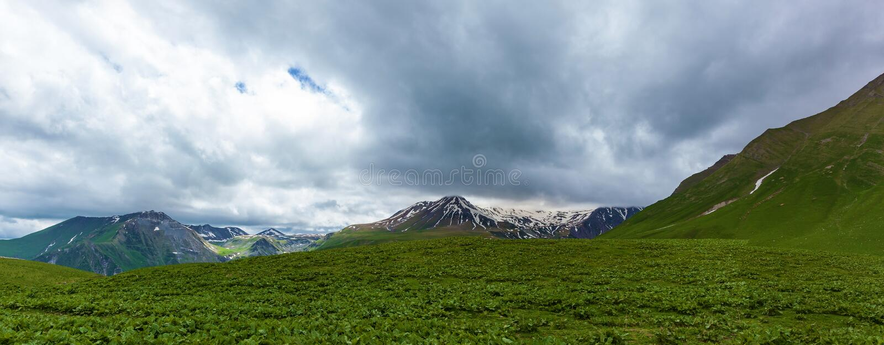 冰川和雪山与绿色土地环境美化 免版税库存图片