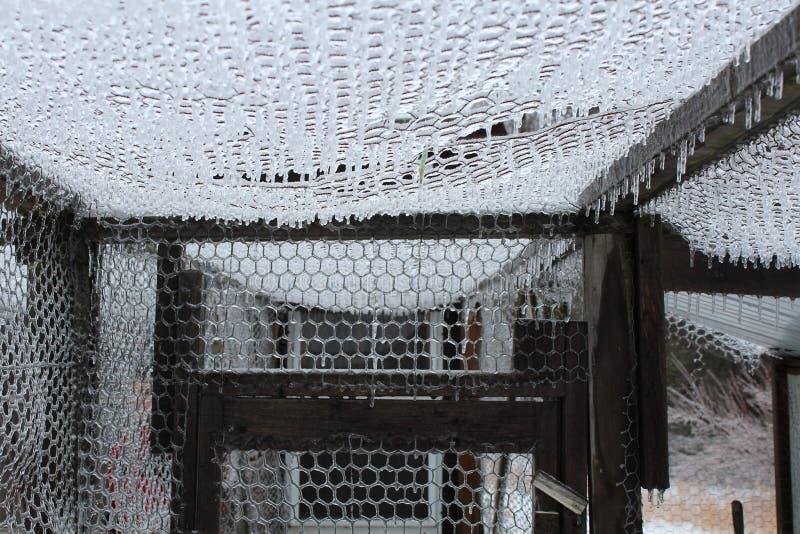 冰川覆盖的网状电线 免版税库存照片