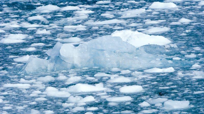 冰川hubbard 免版税图库摄影