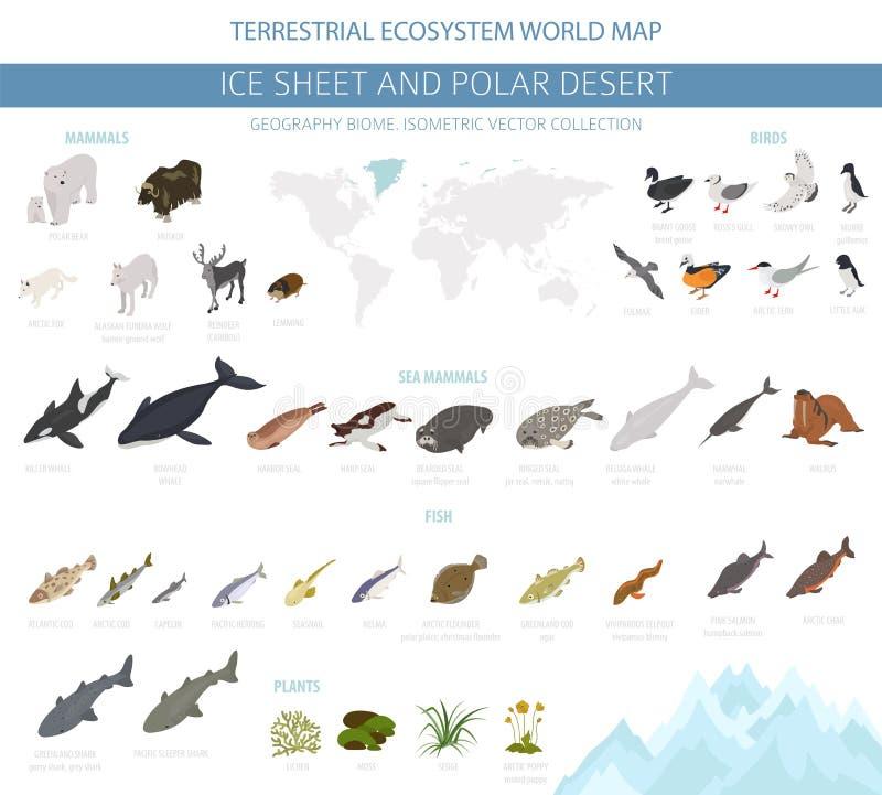 冰床和极性沙漠生物群系 等量3d样式 地球生态系世界地图 北极动物、鸟、鱼和植物 皇族释放例证