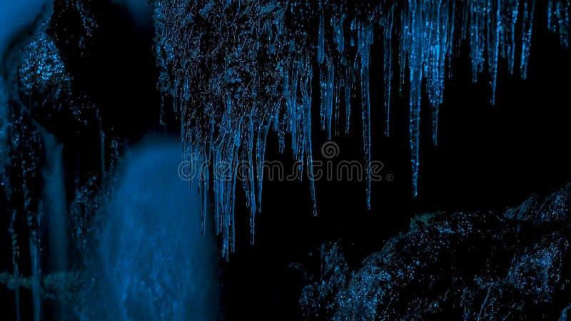 冰柱在反对森林和冬天微明黑暗的晚上  免版税图库摄影