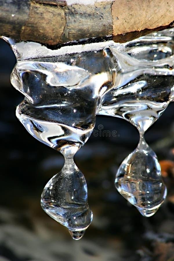 冰柱熔化 免版税图库摄影
