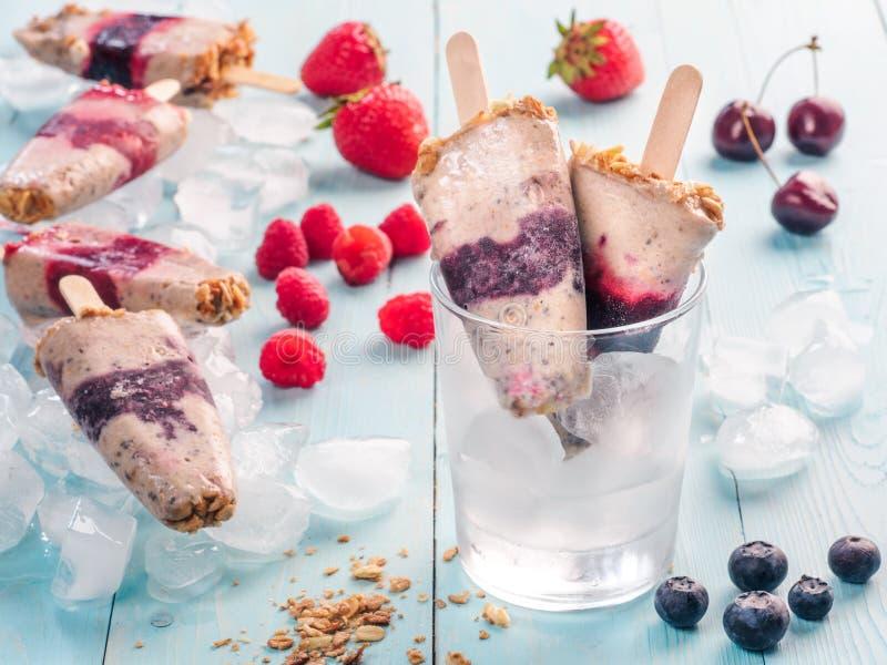 冰棍儿用莓果、格兰诺拉麦片和chia种子 免版税图库摄影