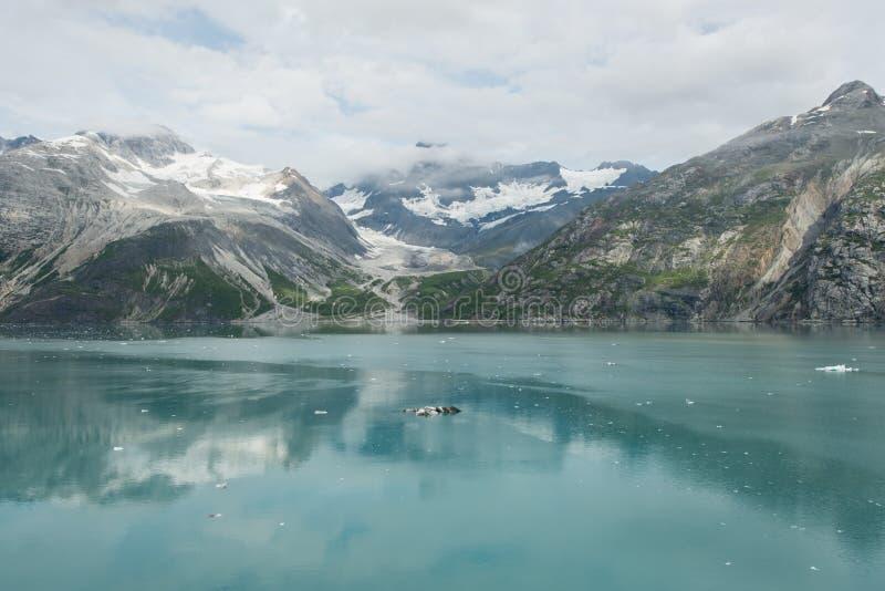 冰河海湾,阿拉斯加 免版税库存图片