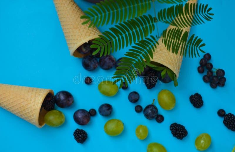 冰淇凌短号用在蓝色背景的莓果 库存图片