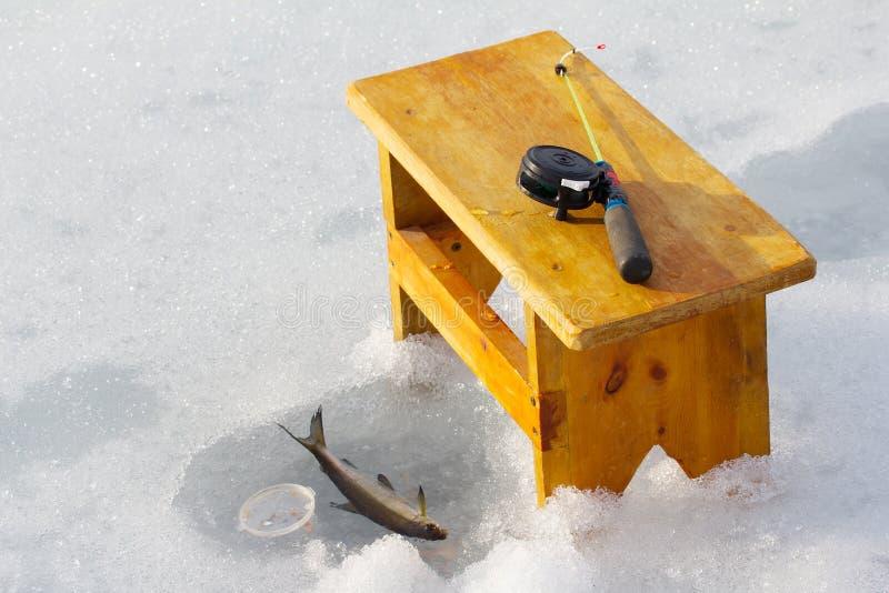 冰渔在挪威 三河鳟的壮观的生产 免版税库存图片