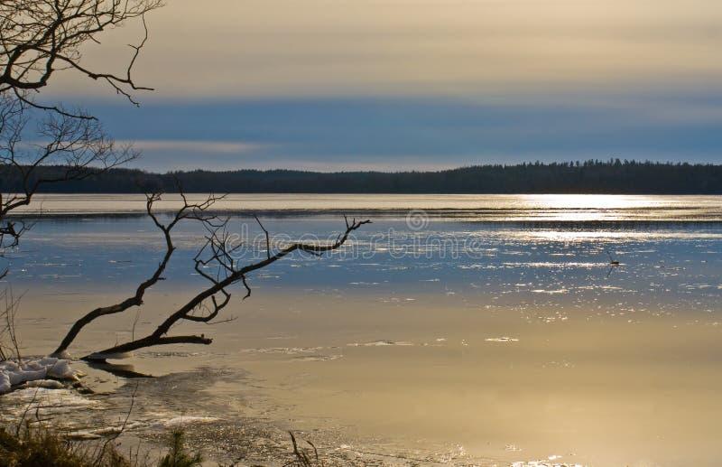 冰湖熔化 免版税库存照片